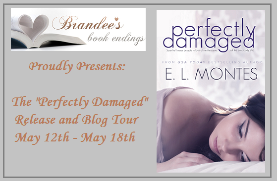 Perfectly Damaged by E.L. Montes Release and Blog Tour & Giveaway!!!
